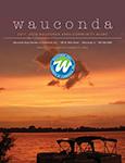 Wauconda IL DIR 2017
